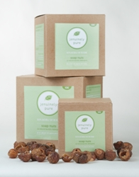 pure-soap-nuts